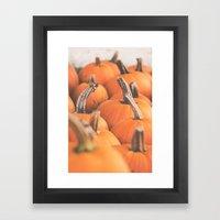 Pumpkin Season. Framed Art Print