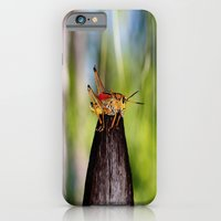 Precariously Perched iPhone 6 Slim Case