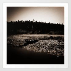 Moonlight Lake Art Print