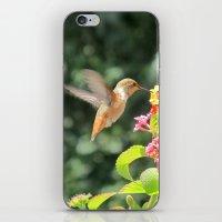 Radiant Nature Humming Away iPhone & iPod Skin