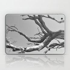 Driftwood Ladder B/W Laptop & iPad Skin