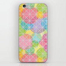 Behind the Fence iPhone & iPod Skin