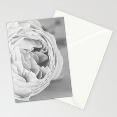 Early Roses - Black & White Stationery Cards
