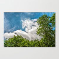 Rider In The Sky Canvas Print