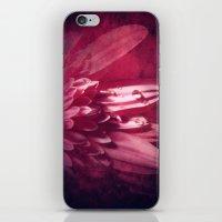 Petal Red iPhone & iPod Skin