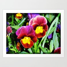 Pansy party Art Print