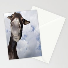 Funny Donkey Stationery Cards