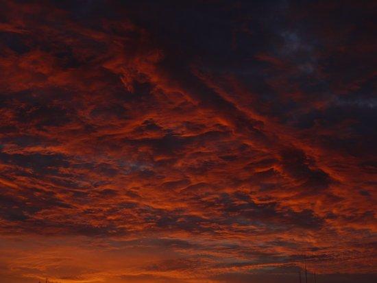 Sunset II Canvas Print