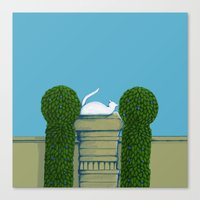 White Cat On The Wall La… Canvas Print